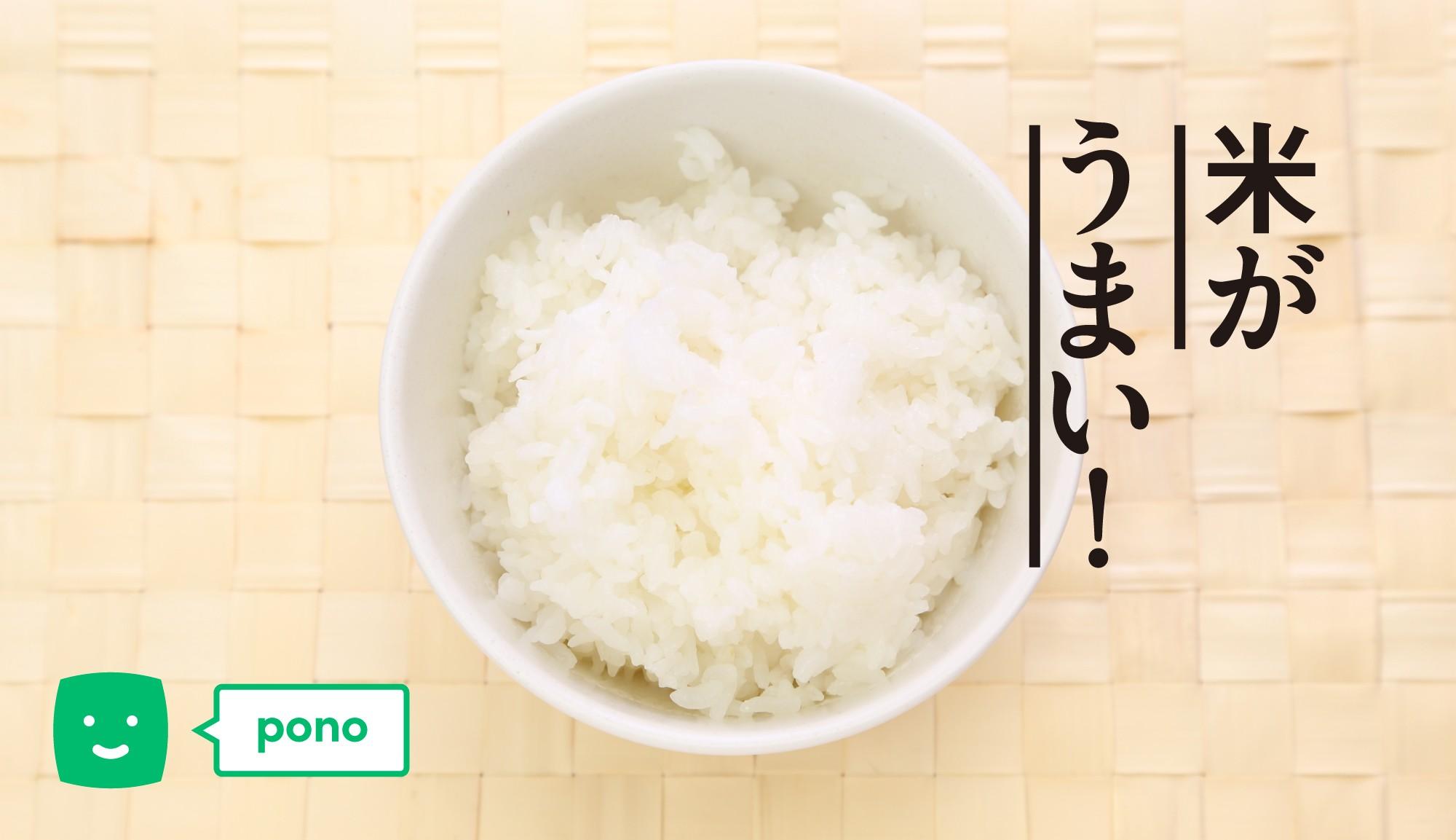 ろはこ米がなんかうまいぞ。